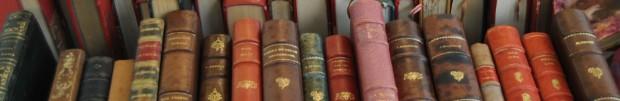 cropped-old-books-paris-porte-de-vanves.jpg